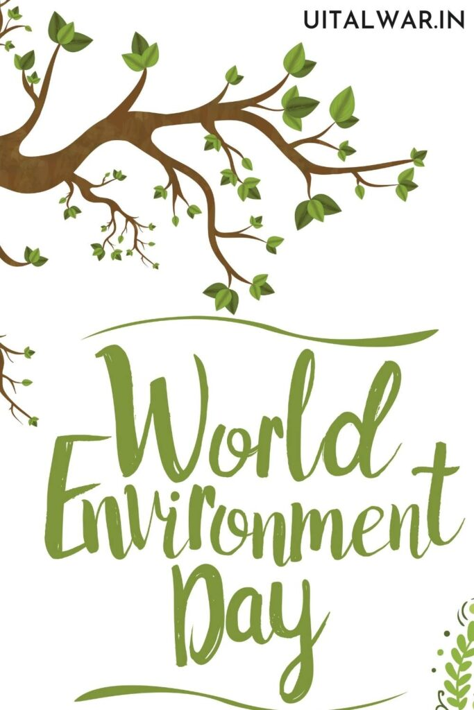 Essay on World Environment Day for Students in English