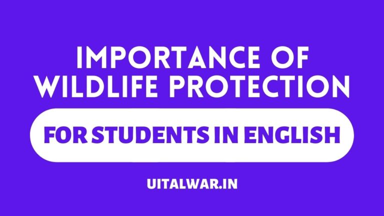 Importance of Wildlife Protection